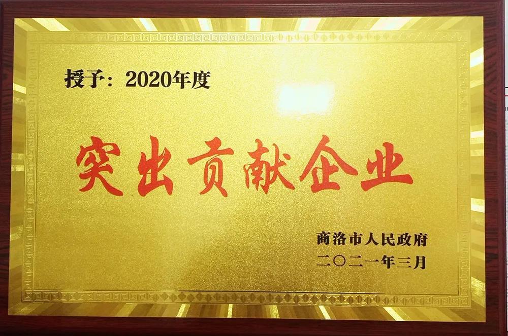 """大西沟矿业公司获商洛市""""2020年度突出贡献企业奖""""殊荣"""